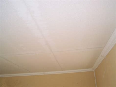 Smooth Ceiling by Polyproducts Product 1