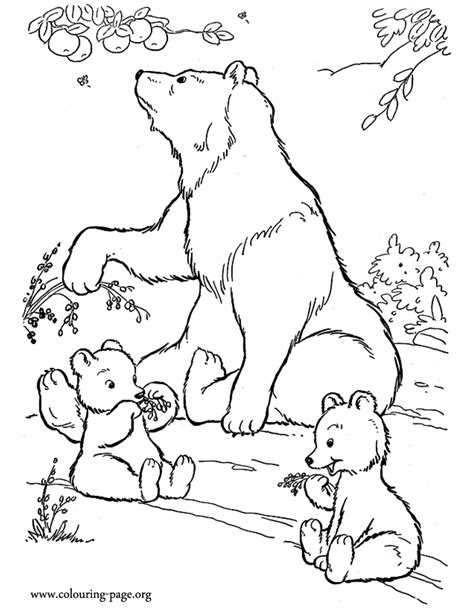 free coloring pages of bear cubs