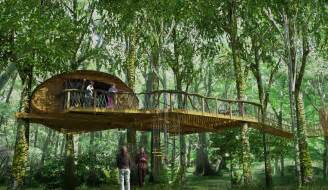 tree houses treehouse experience loved by parents parenting news