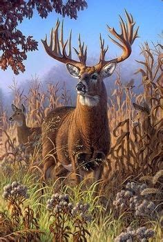 17 Best images about Hunting Artwork on Pinterest | Deer ... Whitetail Buck Drawings