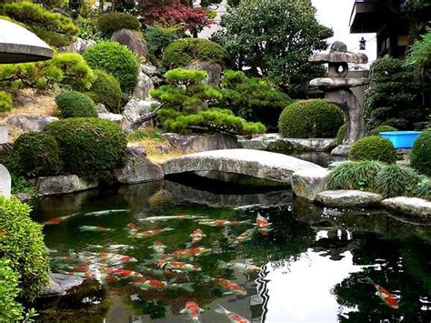 zen water garden 33 best images about my future koi pond ideas on japanese koi water pond and backyards
