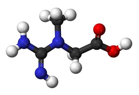 Suplemen Tathion creatine supplementation 187 science for fitness