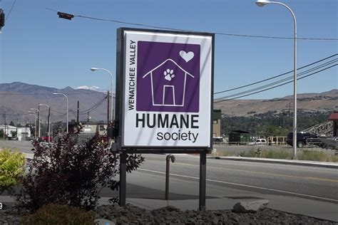 mountain home humane society humane society receives grant