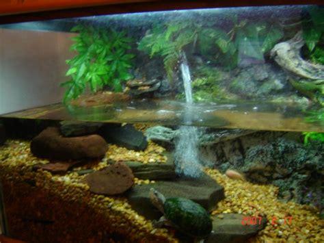 aquarium design waterfall turtle with fish aquarium small turtle aquarium 2017