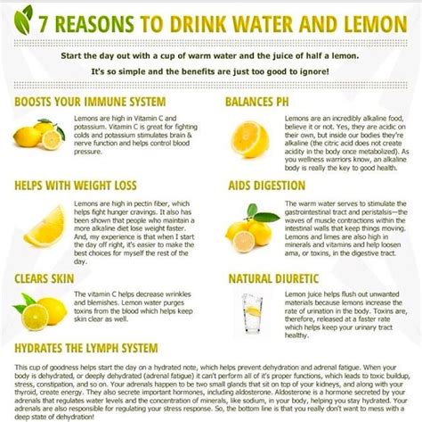 Lemon And Warm Water Detox Diet by The Benefits Of Lemon Water Here S To Your