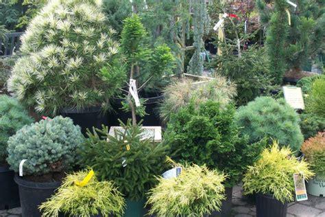 Sixteen Acres Garden by Lawn Garden 16 Acres Garden Center