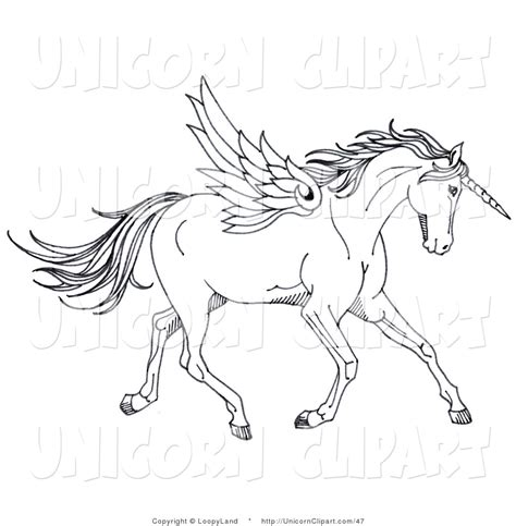 unicorn clipart black and white black and white clipart clipart suggest