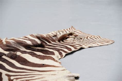 zebra hide rug for sale zebra rugs for sale cowhide rugs for sale cowhide rug ikea
