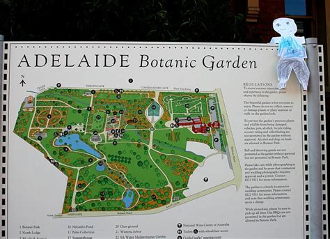 Adelaide Botanic Gardens Map Botanic Gardens Adelaide