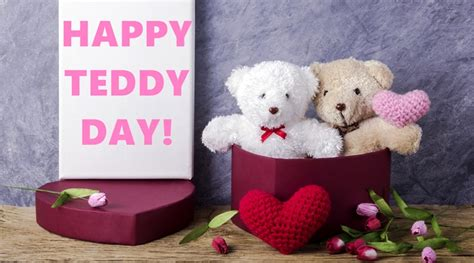 teddy day images  pictures   hd