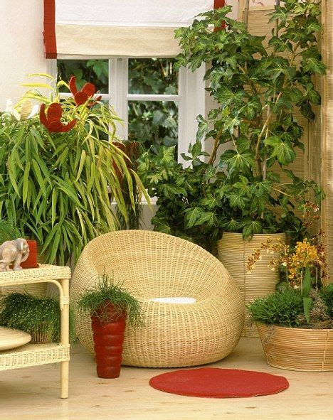 Keep Out Of Room Indoor by How To Keep Your Houseplants Happy Follow Our Five Point