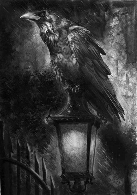 bird themes in macbeth shakespeare uses various symbols to develop themes the