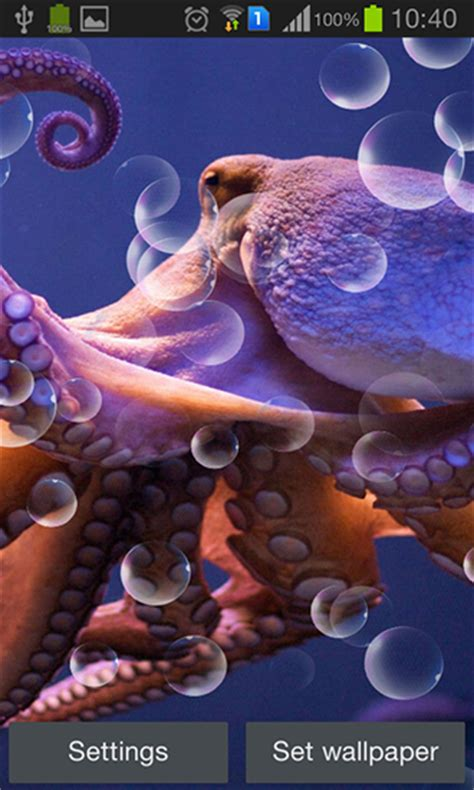 octopus l octopus live wallpaper for android octopus free download