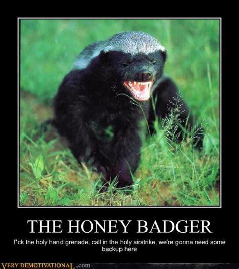 honey badger quotes quotesgram