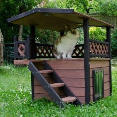 backyard rain shelter 17 best images about rabbits and ideas on pinterest