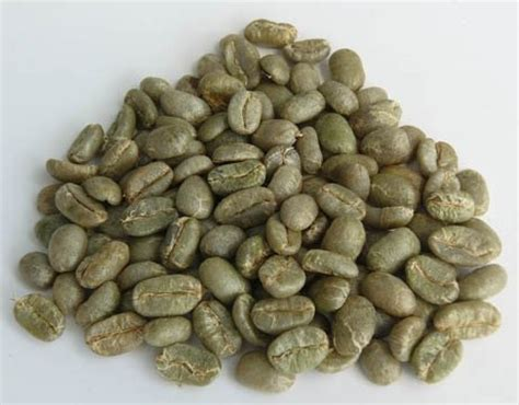 Kopi Arabica Preanger 1 Kg Green Bean Coffee kopi luwak green bean arabica products indonesia kopi luwak green bean arabica supplier