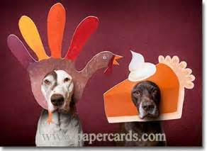 dogs with thanksgiving masks 1 card 1 envelope avanti thanksgiving card inside home