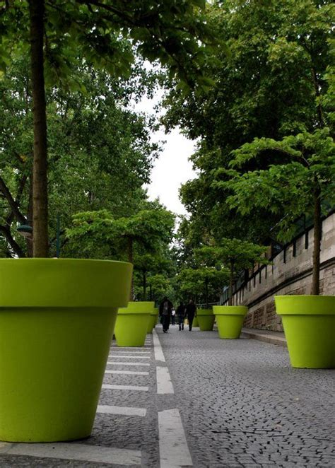 Large Planter Pots For Trees by 25 Best Ideas About Tree Planters On