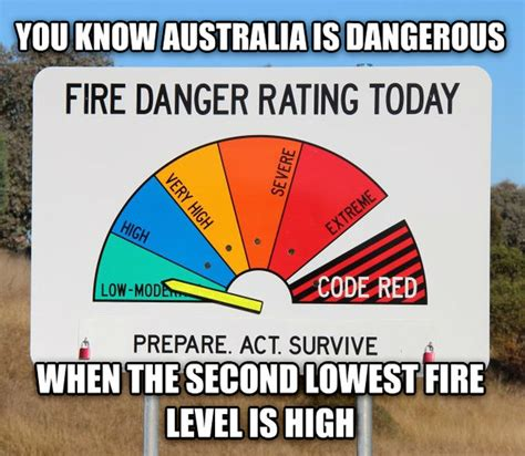 Australian Meme - 29 of the funniest memes about australia