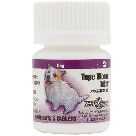 worm pills for dogs worm tabs for dogs 5 tablets entirelypets