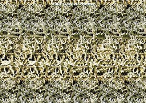 imagenes ocultas entre otras blender maniacs computa 231 227 o gr 225 fica estereograma 3d