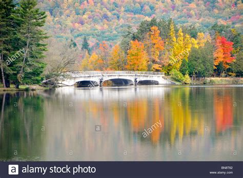 red house lake red house lake allegany state park new york stock photo royalty free image 30312746