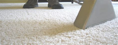 rug cleaning sydney carpet cleaning sydney best carpet cleaners sydney