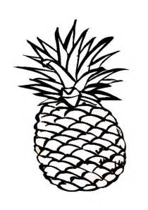 pineapple coloring page pineapple coloring pages