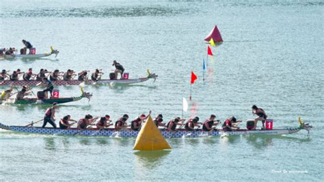 dragon boat festival 2017 san francisco 2017 northern california dragon boat festival lake