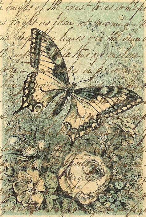 Decoupage Prints - mariposas para decoupage decoupage butterfly and vintage