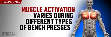 different types of bench press machines muscle activation varies during different types of bench presses fitnessrx for men