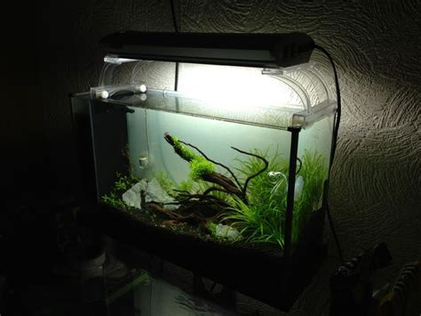 home made fish tank decoration