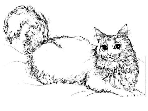 dibujos para pintar gatos dibujos para pintar de gatos fantasticos dibujos de gatos