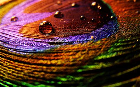 creative wallpaper unique wallpaper creative hd wallpapers