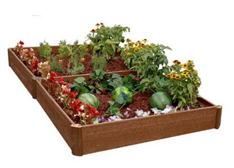 How to Grow a Vegetable Garden   Gardening Tips for Brown
