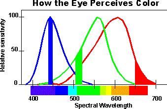 how does the eye see color digital colour basics