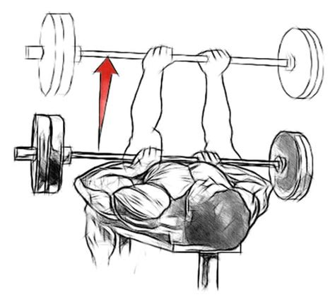 bench press close grip dips replacement exercise bodybuilding com forums