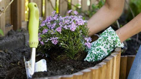Tuin Aanleggen Tips by 25 Tips Goedkoop Tuin Aanleggen Of Opknappen Je Tuin