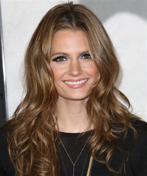 Stana Katic Long Wavy Formal Hairstyle   Medium Brunette