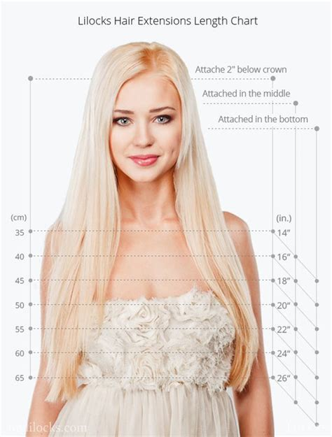 clip in hair extensions lengths lilocks at mylilocks hair extension length chart
