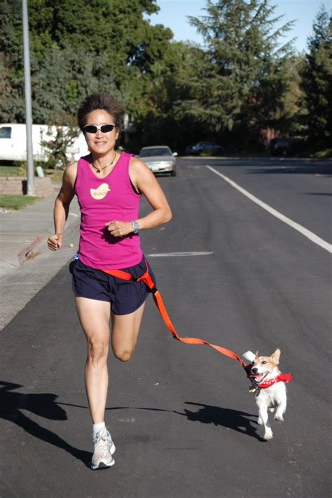 running leash a new year s resolution for you and your pooch get fit with your huffpost