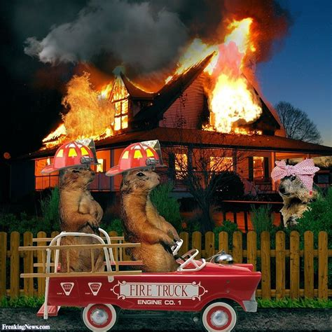 picture of a house groundhog fire deptartment attending a house fire pictures freaking news