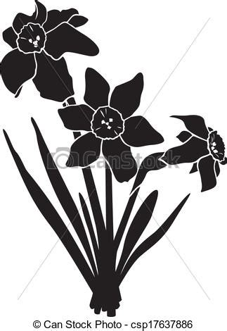 vector  daffodils bouquet silhouette image narcissus