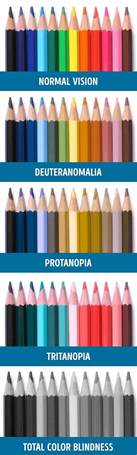 color blind types color blindness demonstration using coloured pencils