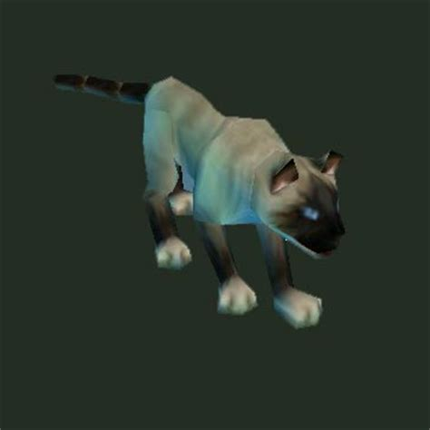 Wow Vanity Pets by Wow Vanity Pets A Visual Guide To World Of Warcraft