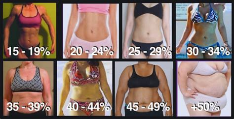 healthy fats percentage the secret to a flat stomach and six pack abs