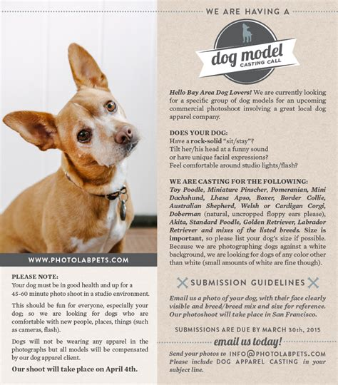 A Call For Model Pets by Tails From The Lab Bill Nat