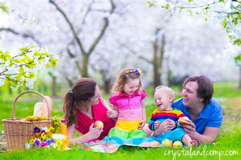 Picnic Family by 25 Family Picnic Ideas You Will Crystalandcomp