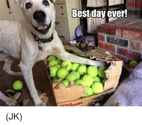 Best Day Meme - best day ever jk meme on sizzle