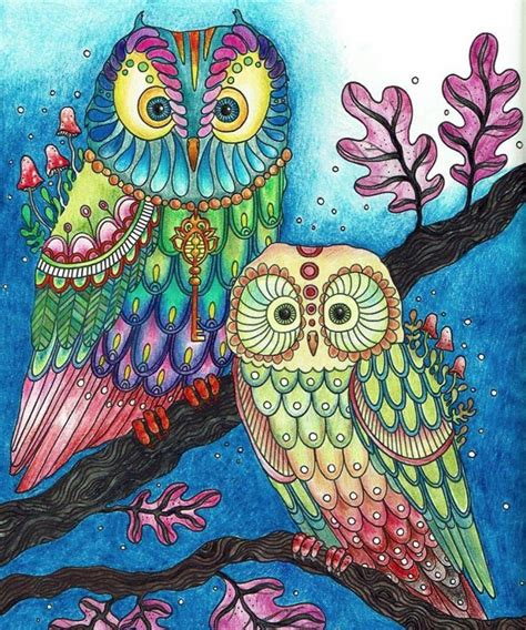 colored pages 25 best ideas about owl coloring pages on